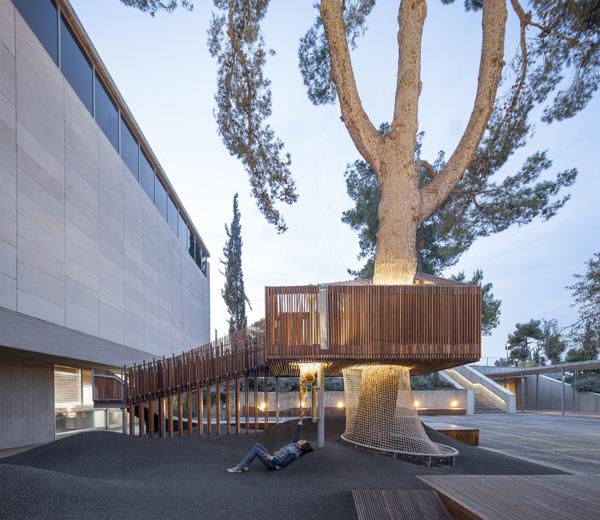 עץ קיים שסביבו נבנה הפרויקט. צילום: עמית גירון