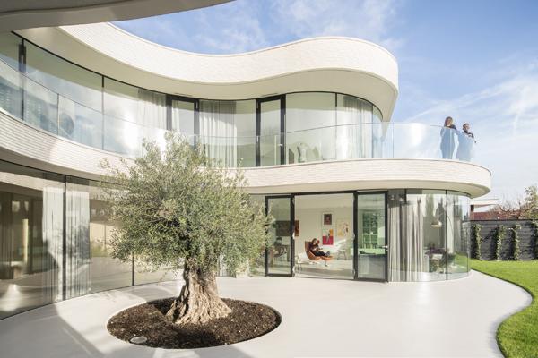 העץ מחלק את הבית לשני אגפים ויוצר הפרדה ללא צורך בשימוש בקירות
