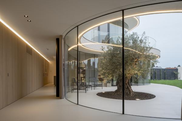 המסדרון בחלק הצר של הבית מאפשר מבטים על נקודת המוקד של הבית - עץ הזית