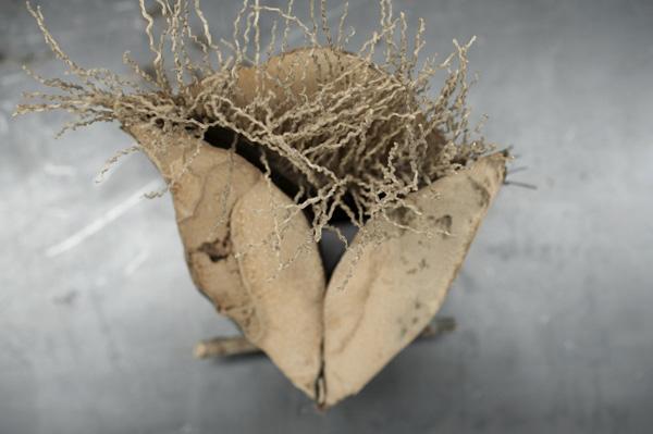 מתוך התערוכה מחול הסנסנים של אורנה מינץ