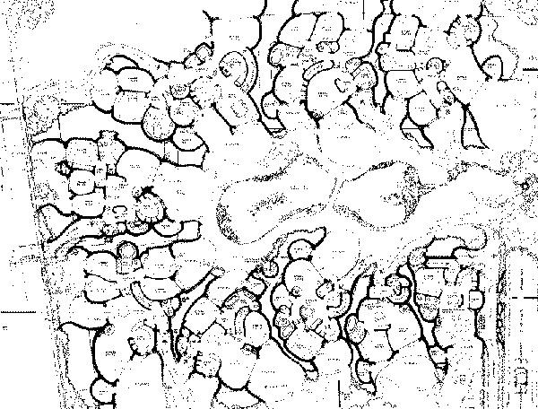 תוכנית פני השטח