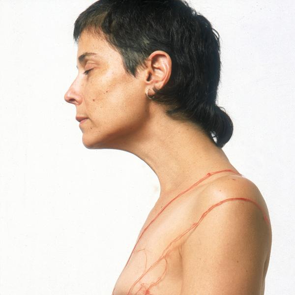 צופית קירשנר, 2010, מתוך התערוכה: