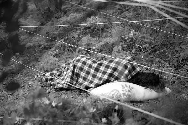 ראויה זידאן, תצלום מתוך תערוכת הצילומים