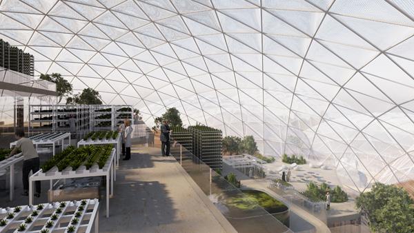 גידולים חקלאיים על גגות המבנים הפנימיים. הדמיה: BIG - Bjarke Ingels Group