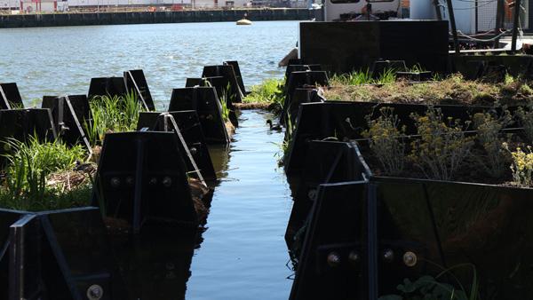 התעלה בתוך הפארק. צילום: Recycled Island Foundation