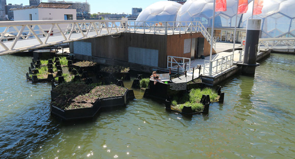 Rotterdam Floating park - מבט כללי. צילום: Recycled Island Foundation