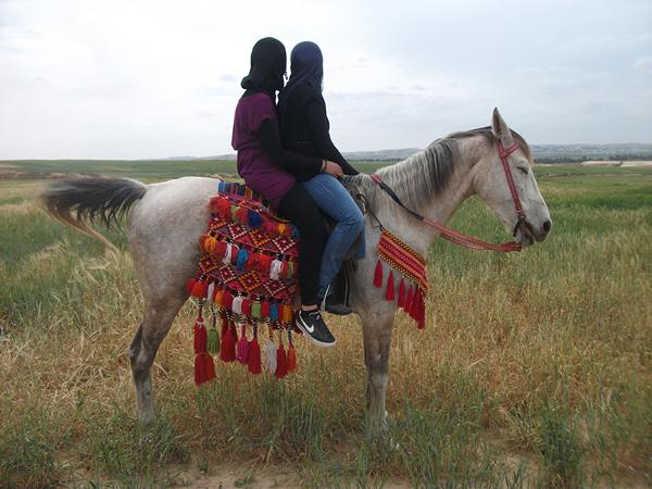 משה בלמס, רוכבות, חורה 2012