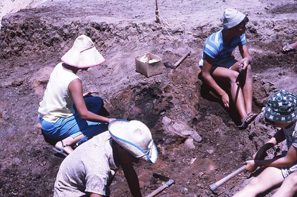 צילומים מאתר החפירה בג