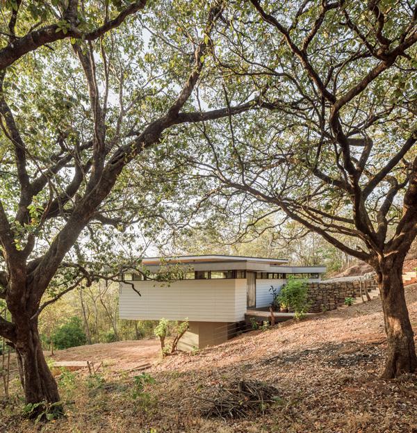 הבית משולב לחלוטים בטבע שמסביבו. תכנון: LSD Architects. צילום: Fernando Alda
