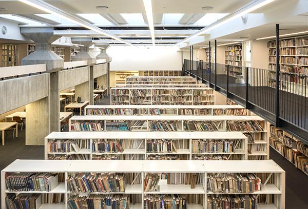 בספריות התל אביב רשומים למעלה מ-36 אלף קוראים פעילים, צילום: משה שפירא