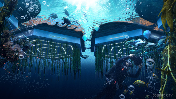 PLATFORMS FROM UNDERWATER: Below sea level, beneath the platforms,