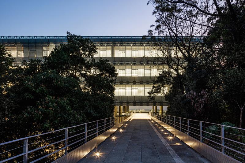 דרך הכניסה למבנהעוברת דרך צמחיה שופעת, צילום: נלסון קון ופדרו מסקרו [תמונות רחפן]